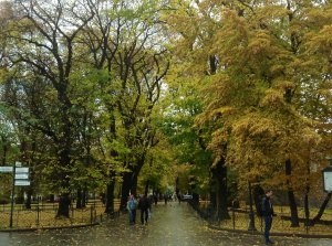 A beautiful park in Krakow's Old Town by the Barbican - October 2013