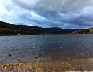 Lake in Titisee, Germany
