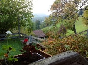 From the window inside Heidi's house
