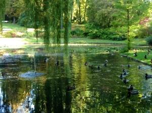 Beautiful Festspielhaus Garden in Bayreuth, Germany