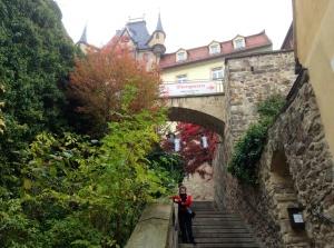 Beautiful Meissen, Germany, aglow in autumn splendor