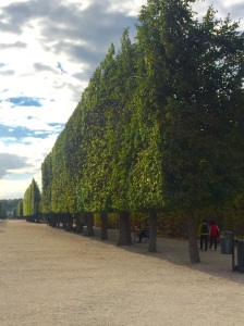 The gardens of the Schönbrunn Palace