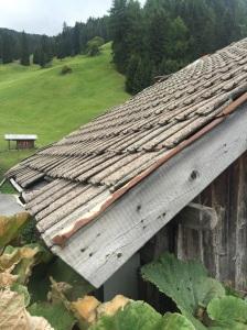 A scene in the Dolomites