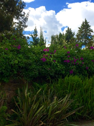 The Gardens among the Incan Ruins in Cuenca, Ecuador